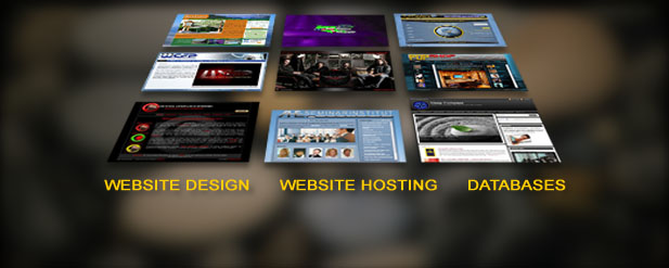 WEB SERVICES - website design, web hosting, database design
